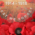 Lest We Forget - 1914-1918
